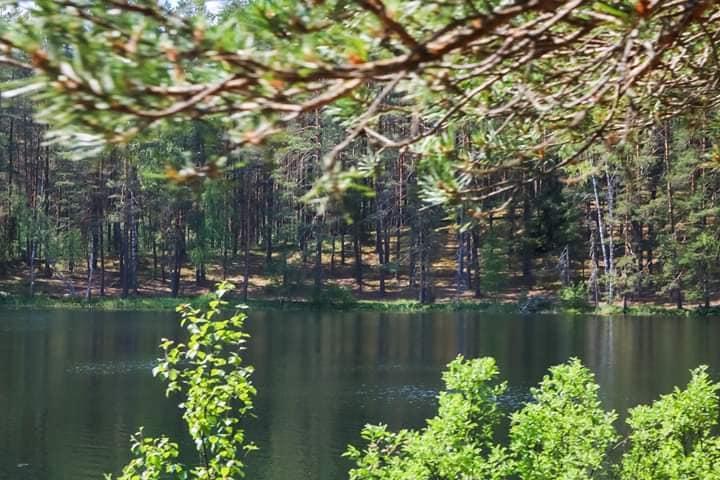 Pažink Labanorą! – pažintinis pėsčiųjų žygis po Labanoro regioninį parką